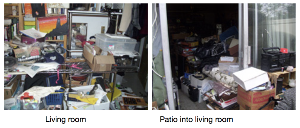 Chronic Disorganization Living Room and Patio